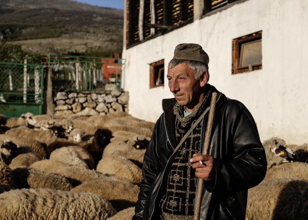 Balkan Cheese Stories-10